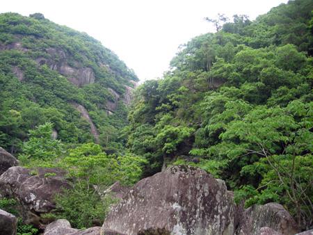 ライオンキングの岩.jpg