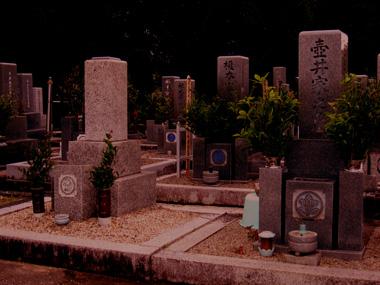 墓場、夕方.jpg