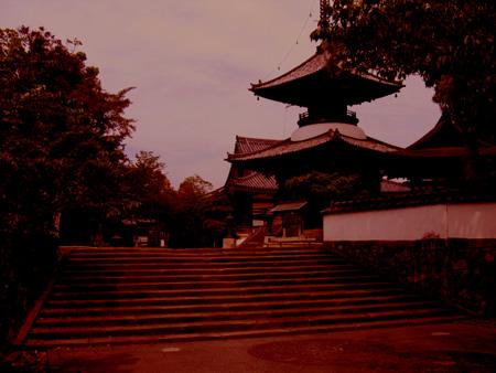 高山寺、夕方.jpg