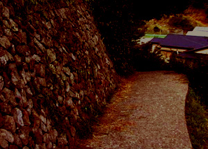 マキの家への道/夕方s.jpg